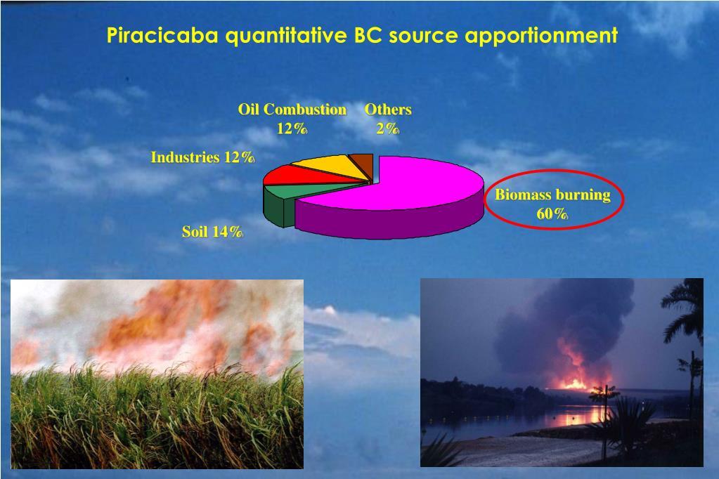Piracicaba quantitative BC source apportionment