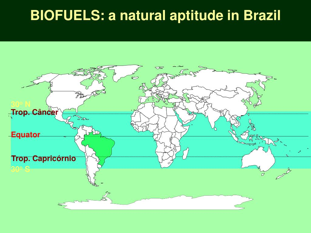 BIOFUELS: a natural aptitude in Brazil