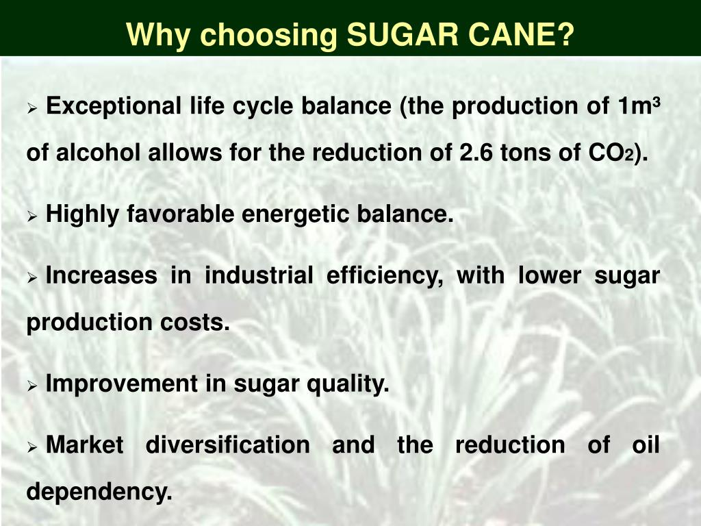 Why choosing SUGAR CANE?