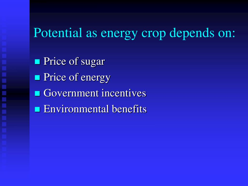 Potential as energy crop depends on: