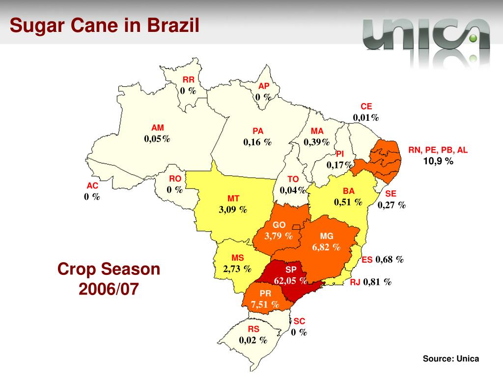 Sugar Cane in Brazil