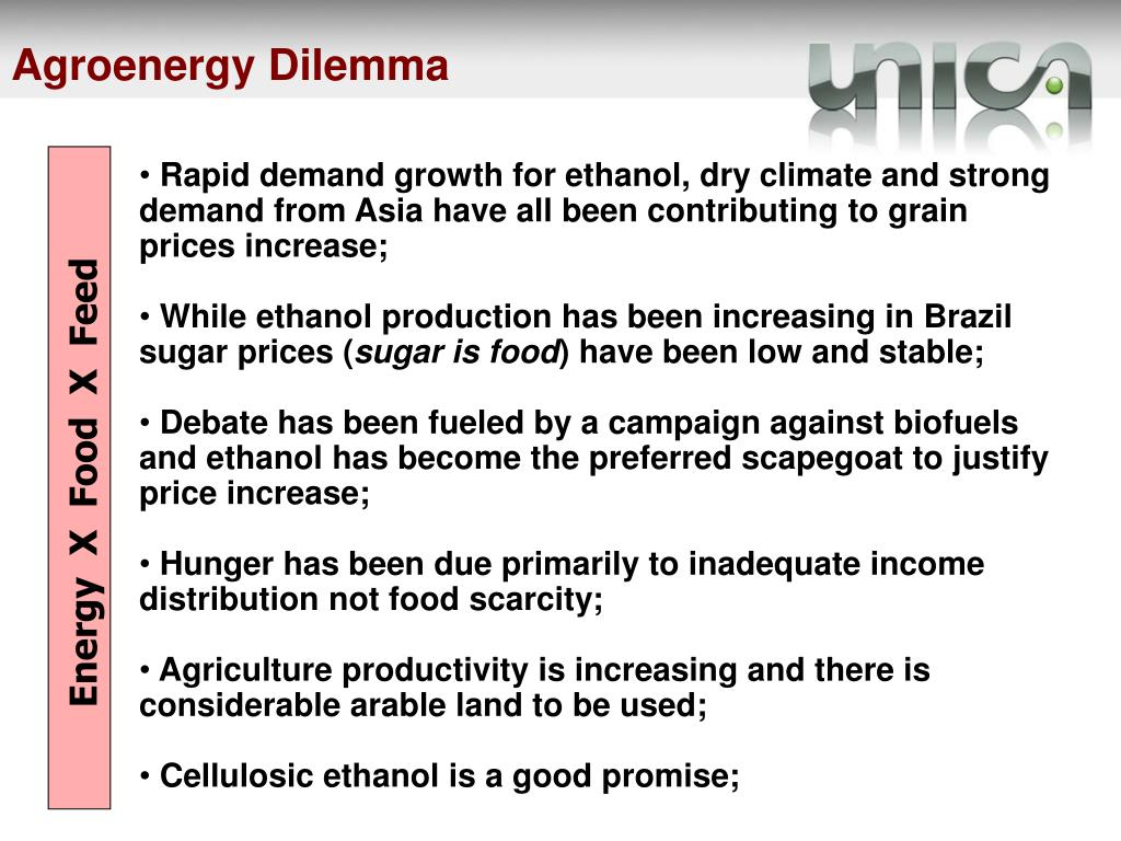 Agroenergy Dilemma