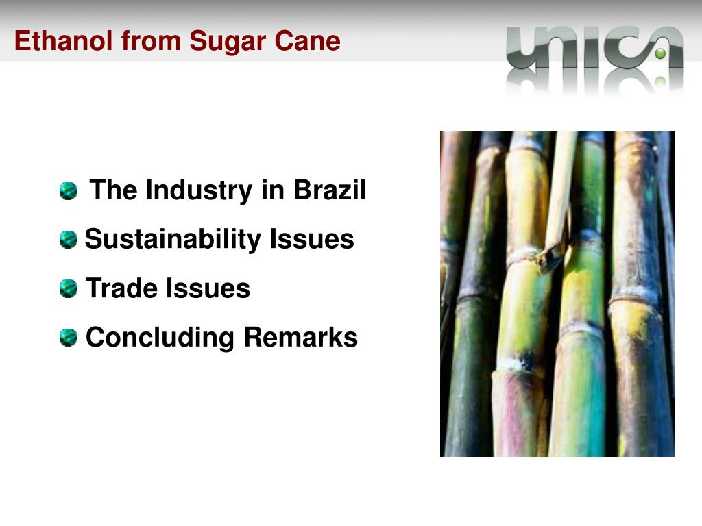Ethanol from Sugar Cane