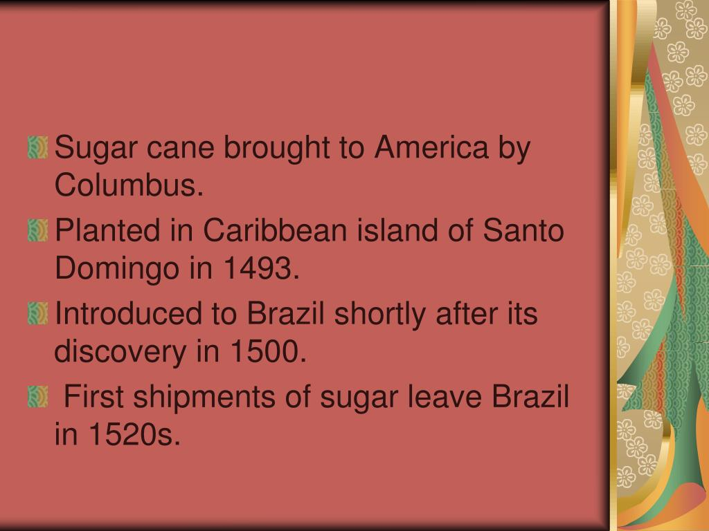 Sugar cane brought to America by Columbus.