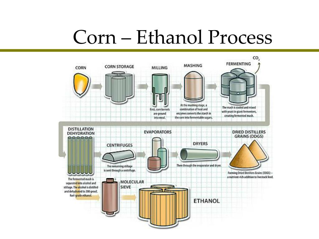 Corn – Ethanol Process