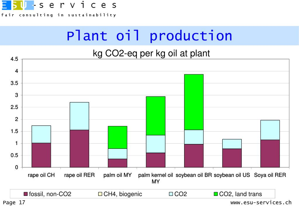 Plant oil production