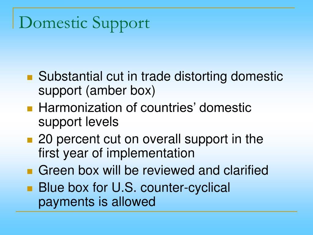 Domestic Support