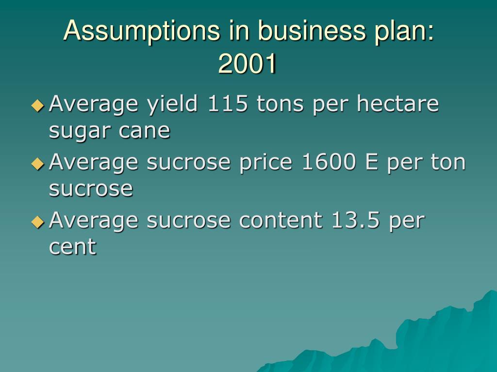 Assumptions in business plan: 2001