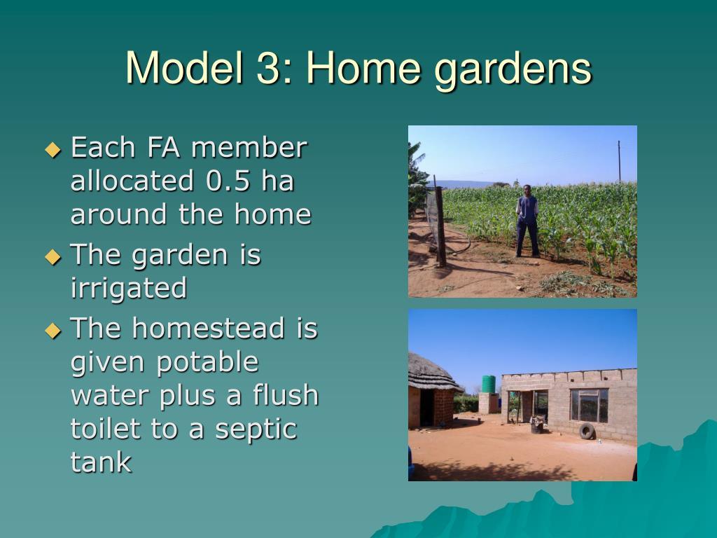 Model 3: Home gardens