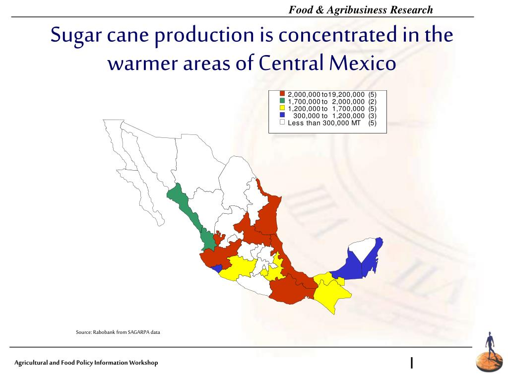 Sugar cane production is concentrated in the warmer areas of Central Mexico