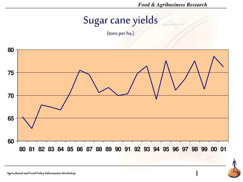 Sugar cane yields