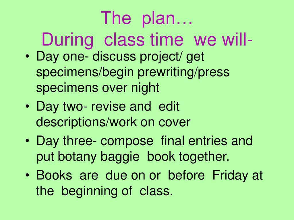 The  plan…
