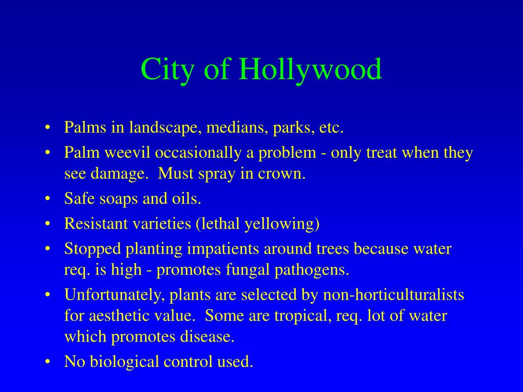 City of Hollywood