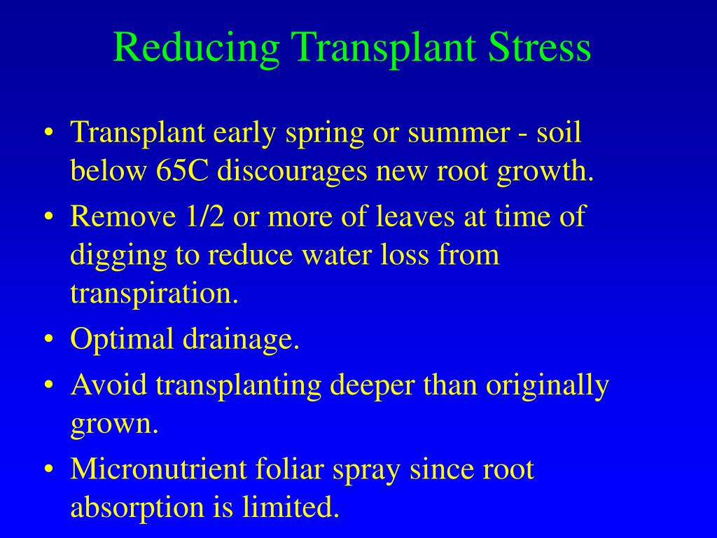 Reducing Transplant Stress