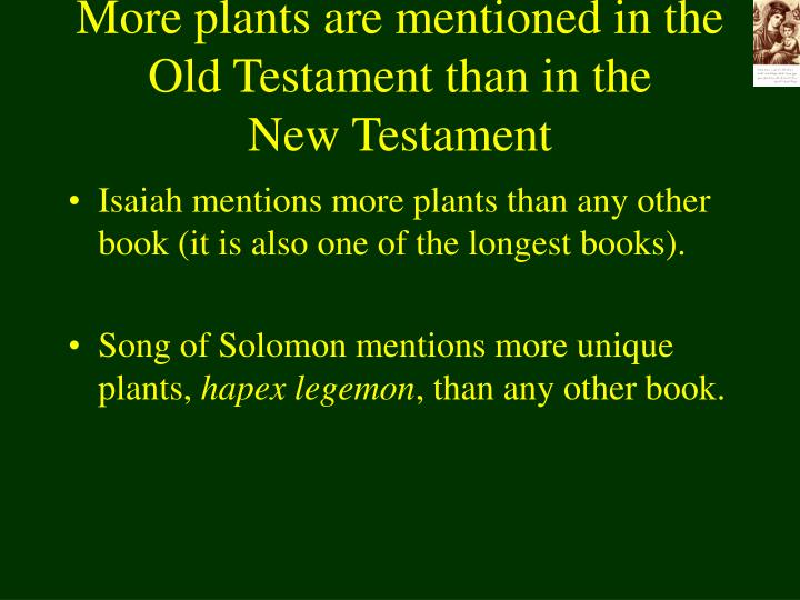 More plants are mentioned in the old testament than in the new testament