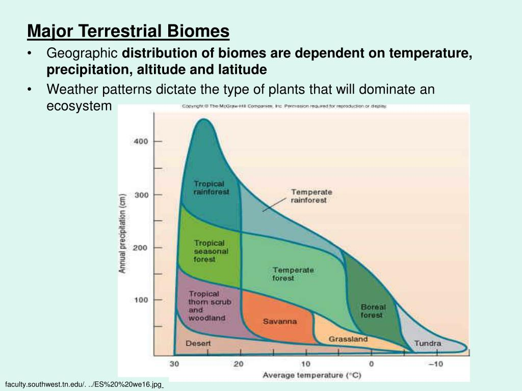 Major Terrestrial Biomes