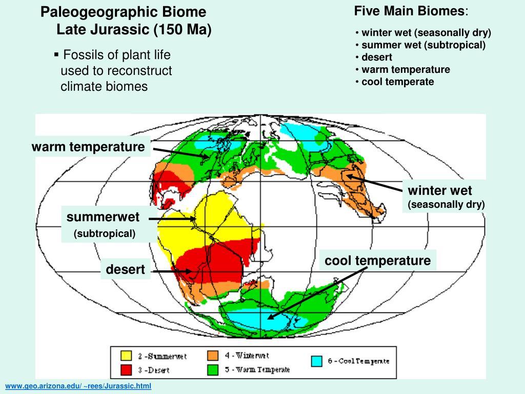 Paleogeographic Biome