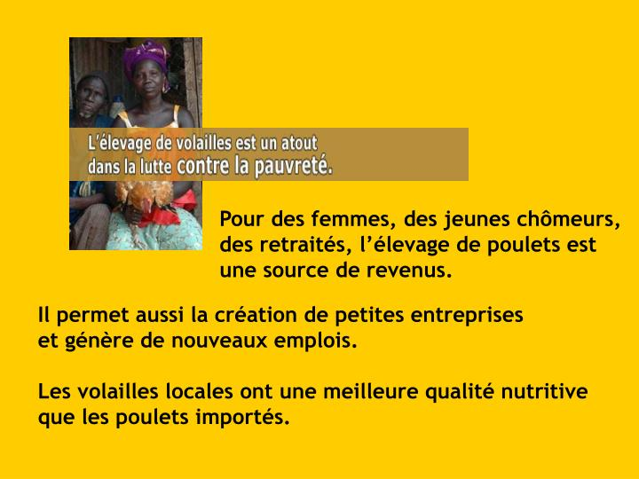 Pour des femmes, des jeunes chômeurs, des retraités, l'élevage de poulets est    une source de revenus.