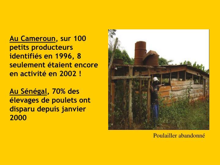 Au Cameroun