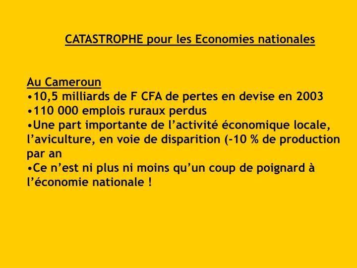 CATASTROPHE pour les Economies nationales