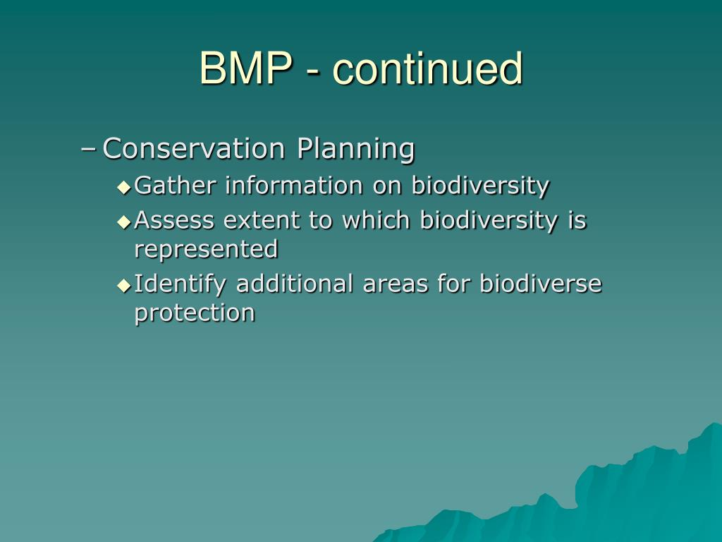 BMP - continued