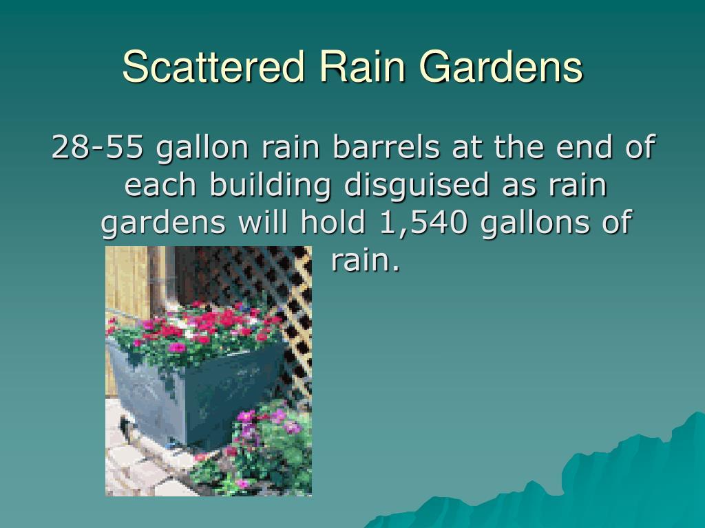 Scattered Rain Gardens