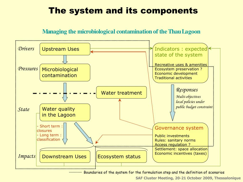 The system and its components