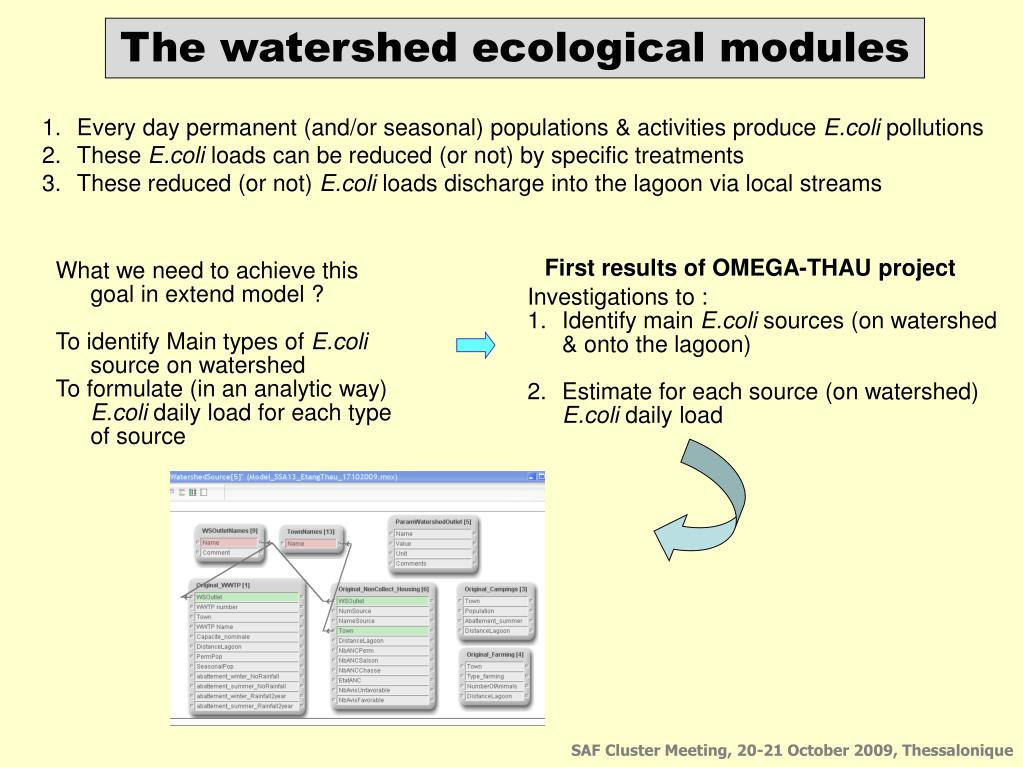 First results of OMEGA-THAU project