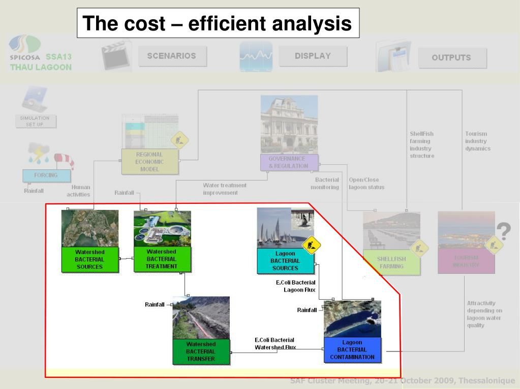 The cost – efficient analysis