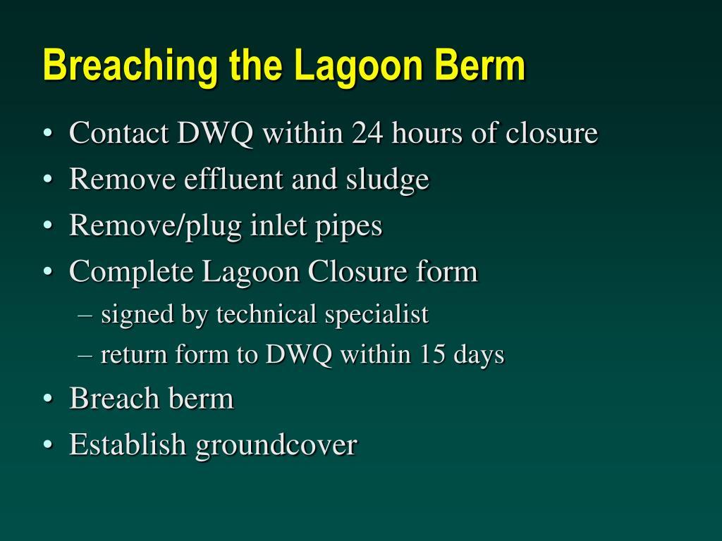 Breaching the Lagoon Berm
