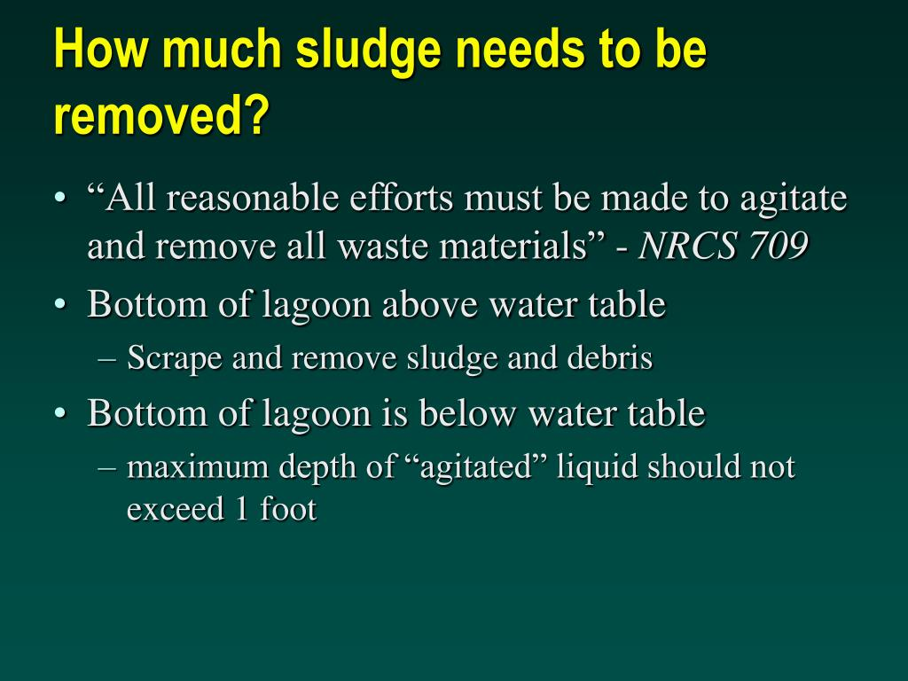 How much sludge needs to be removed?