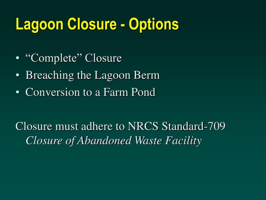 Lagoon Closure - Options