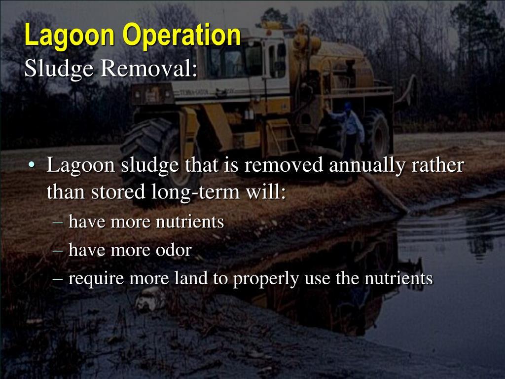 Lagoon Operation