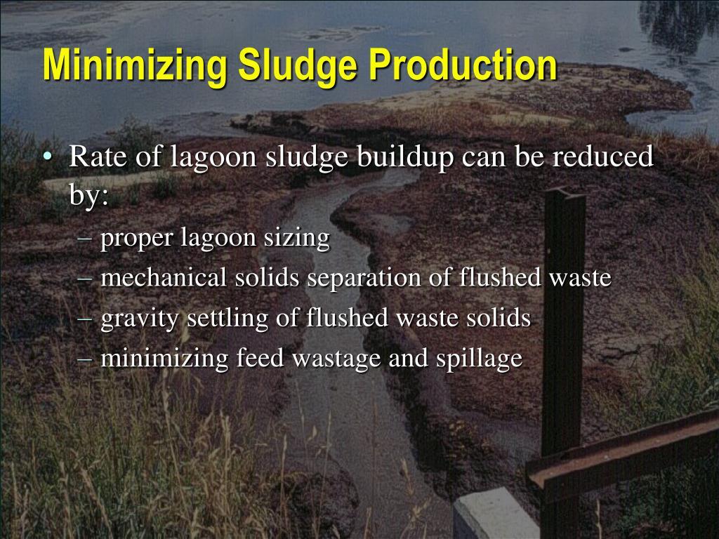 Minimizing Sludge Production