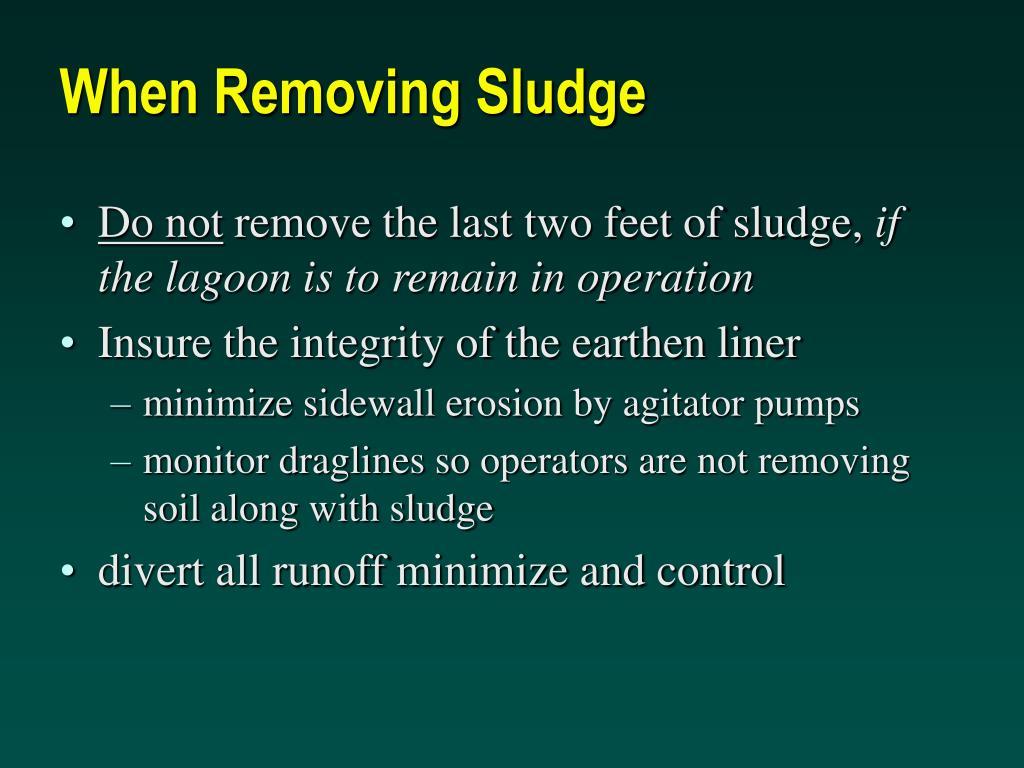 When Removing Sludge