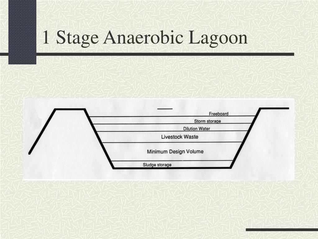 1 Stage Anaerobic Lagoon