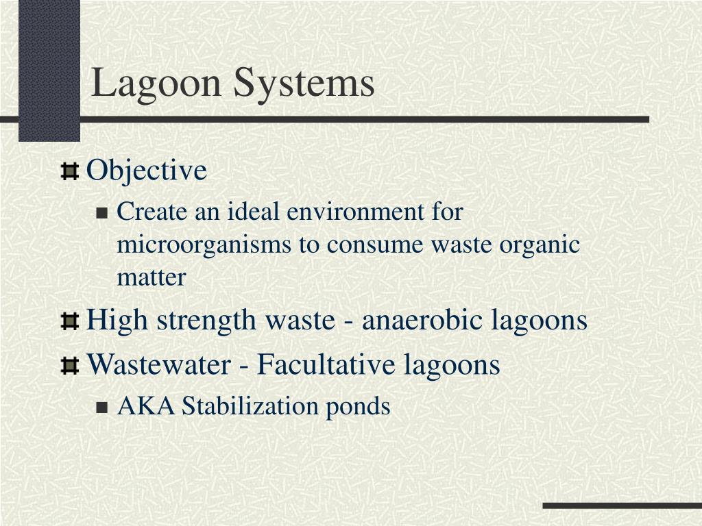 Lagoon Systems