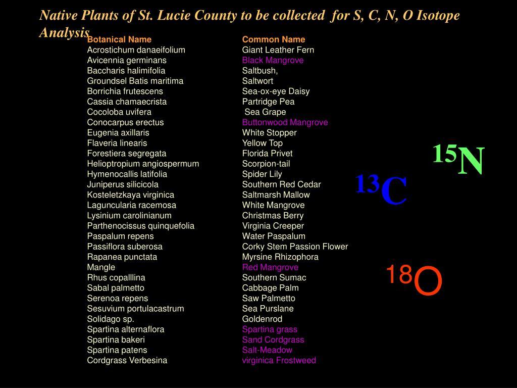 Botanical NameCommon Name