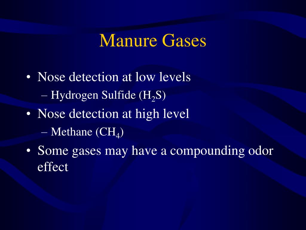Manure Gases