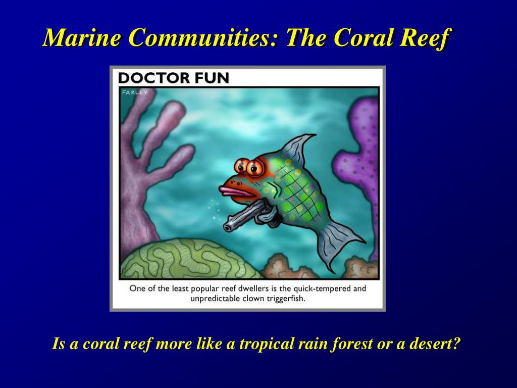 Marine Communities: The Coral Reef