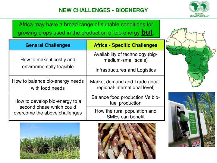 NEW CHALLENGES - BIOENERGY