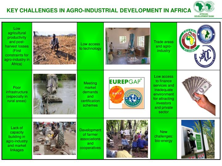 Low agricultural productivity and post-harvest losses (First constraints for agro-industry in Africa)