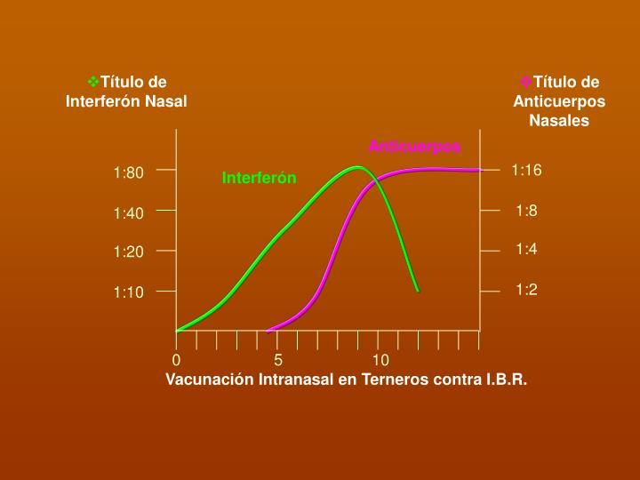 Título de Interferón Nasal