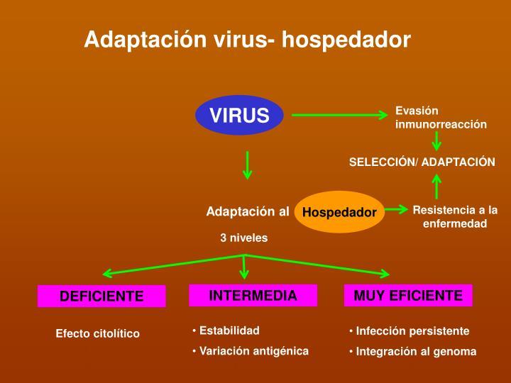 Adaptación virus- hospedador