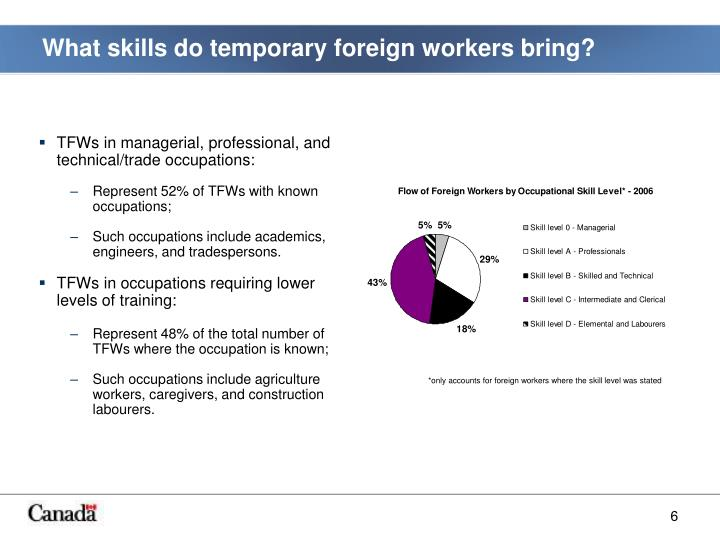 What skills do temporary foreign workers bring?