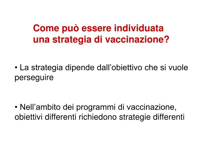 Come può essere individuata una strategia di vaccinazione?