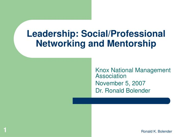 Leadership social professional networking and mentorship