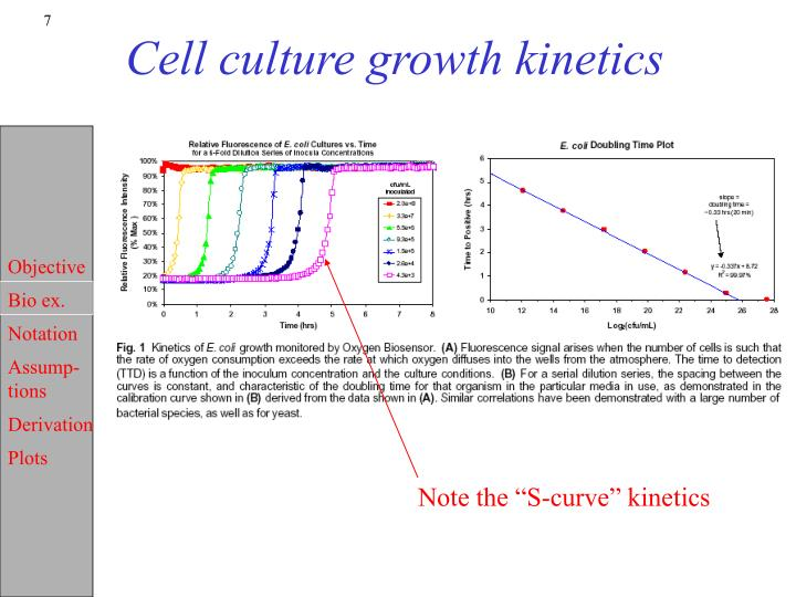 Cell culture growth kinetics
