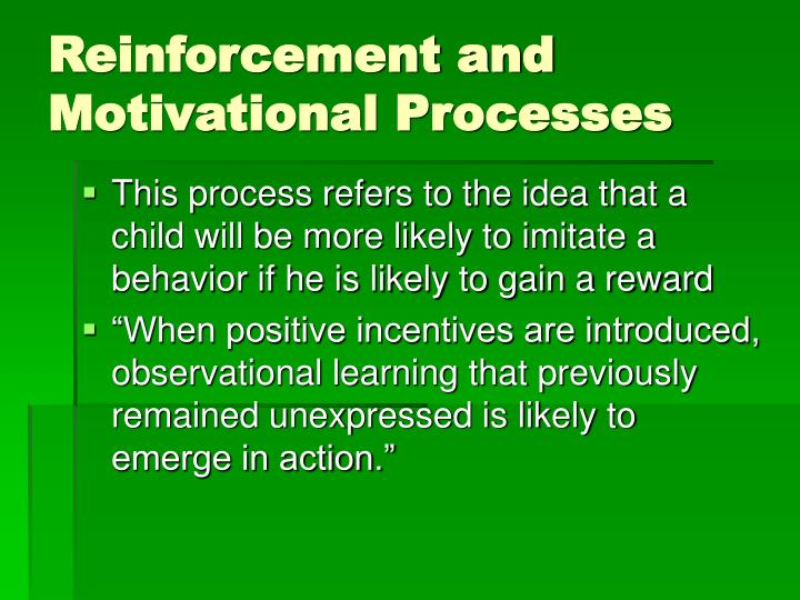 Reinforcement and Motivational Processes