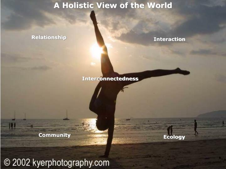 A Holistic View of the World